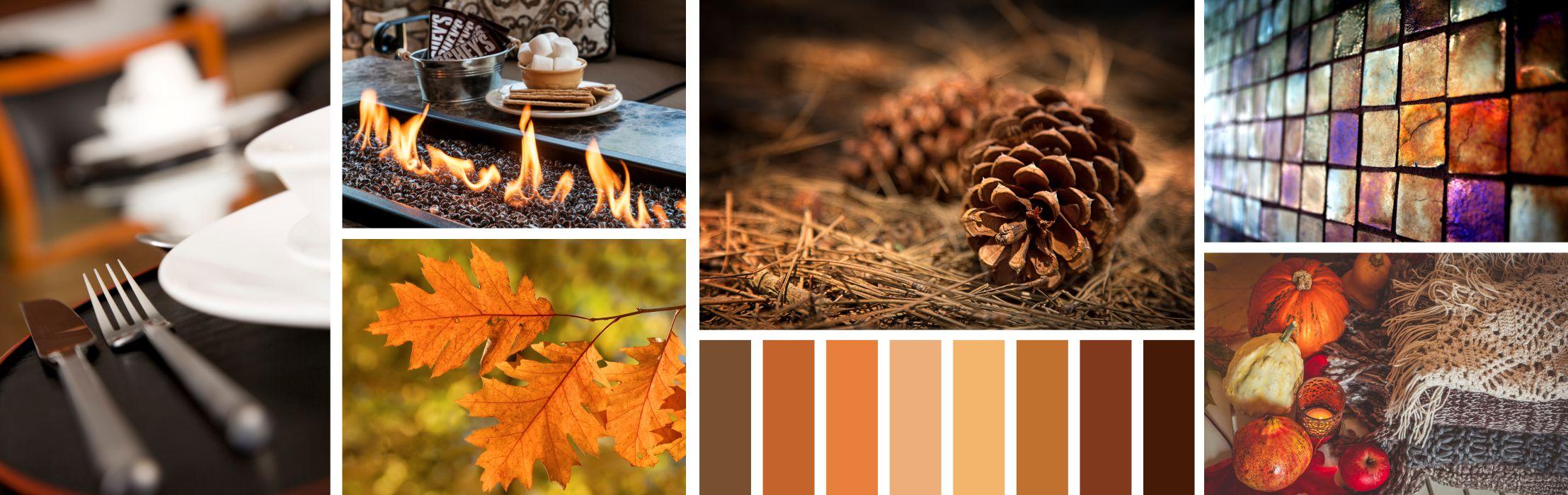 several thanksgiving and fall photos