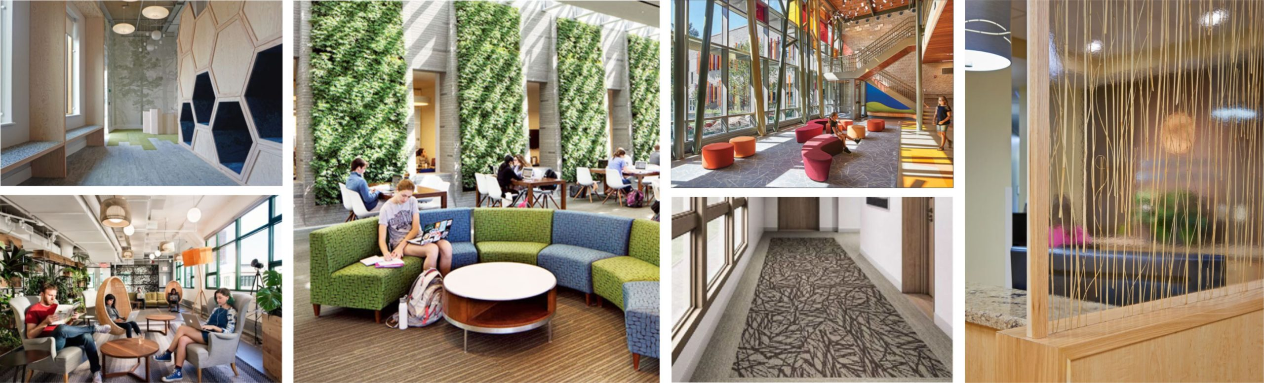 a collage of various biophilic design samples in the real world
