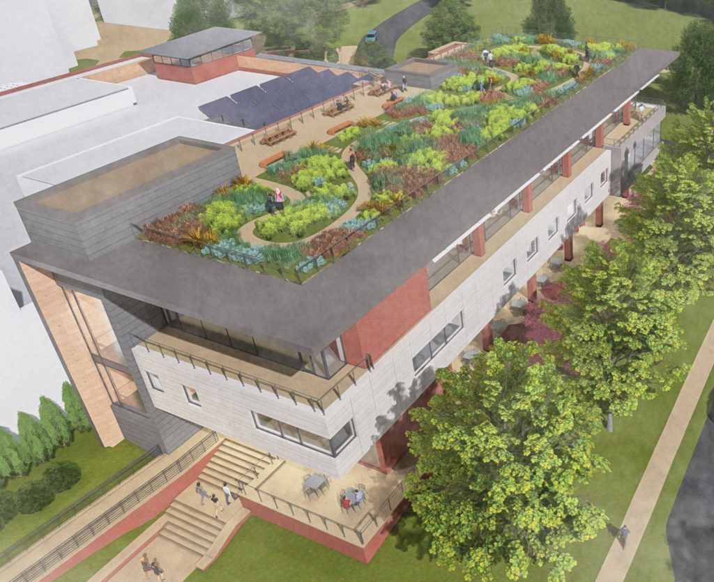 Green roof planned for campus expansion