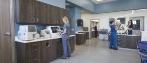Vet Clinic Laboratory